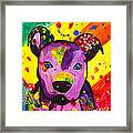American Pitbull Terrier Dog Pop Art Framed Print