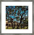 Among The Mission Framed Print
