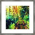 An Uncertain Path Framed Print