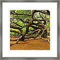 Angel Oak Tree Branches Framed Print