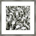 Anguish Framed Print by Shaun Higson
