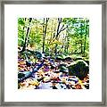 Another Enchanted Forest Framed Print