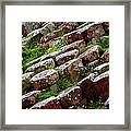 Another View Of The Giant's Causeway Framed Print