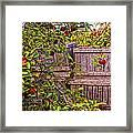 Apple Orchard Harvest Framed Print