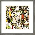 Apple Salad With Capers And Leaf Celery Framed Print
