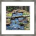 Aspen Crossing Mountain Stream Framed Print