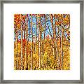 Aspen Fall Foliage Portrait Red Gold And Yellow  Framed Print