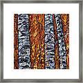 White Trees  Original Oil Painting  Framed Print