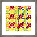 Assorted Citrus Pattern Framed Print