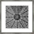 Astrodome Ceiling Framed Print