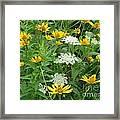 August Wildflowers Framed Print