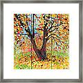 Autumn 1 Framed Print