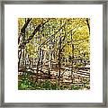 Autumn At Waterfall Glen Framed Print