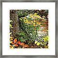 Autumn By A Pennsylvania Mountain Stream Digital Art Framed Print