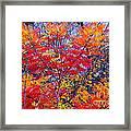 Autumn Colors - 113 Framed Print
