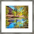Autumn Colours In Moab Framed Print