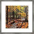 Autumn Creek In The Rain Framed Print