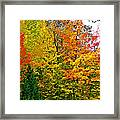 Autumn In Southwest Michigan Framed Print