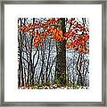 Autumn In Winter Framed Print