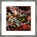 Autumn Leaf Abstract Framed Print