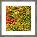 Autumn Mosaic Nj Framed Print