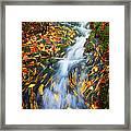 Autumn Mountain Stream Framed Print