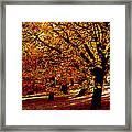 Autumn On Wombat Hill II Framed Print