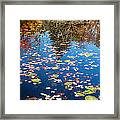 Autumn Reflections Framed Print by Bill Wakeley