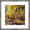 Autumn Road - Tipton Canyon - Casper Mountain - Casper Wyoming Framed Print