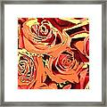 Autumn Roses On Your Wall Framed Print
