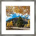 Autumn Scene Framed By Aspen Framed Print