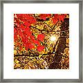 Autumn Sunrise Painterly Framed Print