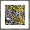 Autumnal Abstracious Framed Print