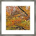 Autumnal Bliss Framed Print