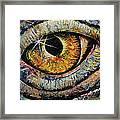 Awakened Dragon Framed Print