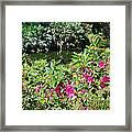 Azaleas By The Pond Framed Print