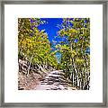 Back Country Road Take Me Home Colorado Framed Print