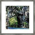Backbone Rock Framed Print