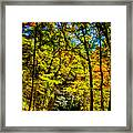 Backroads Of The Great Smoky Mountains National Park Framed Print