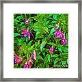 Bama Blooms Framed Print