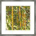 Bamboo Vertical Framed Print by Christina Rahm