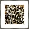 Bannon Diamond 05 Framed Print