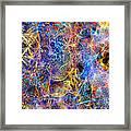 Bardo Framed Print
