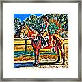 Barn Horse Two Framed Print