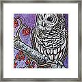 Barred Owl And Berries Framed Print