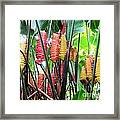 Barrils Flower Framed Print