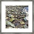 Bay Of Fundy Shoreline Framed Print