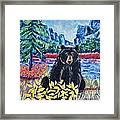 Bear By The Lake Framed Print