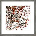 Beautiful Rowan 1 - Square Framed Print