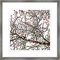 Beautiful Rowan 6 Framed Print